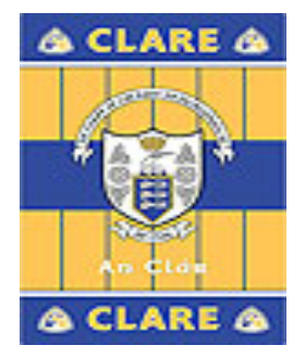 Official G.A.A County Branded Rugs - Clare