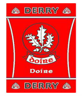 Official G.A.A County Branded Rugs - Derry