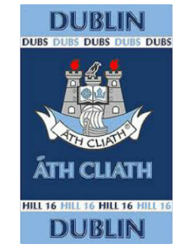Official G.A.A County Branded Rugs - Dublin