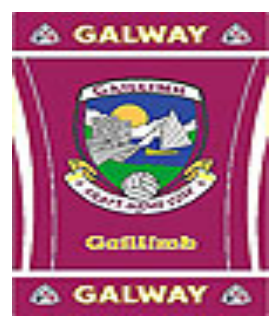 Official G.A.A County Branded Rugs - Galway