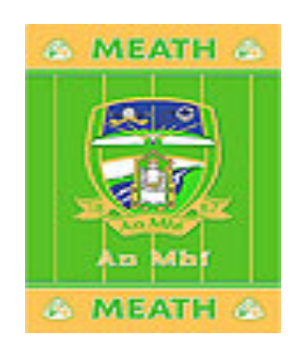 Official G.A.A County Branded Rugs - Meath