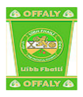 Official G.A.A County Branded Rugs - Offaly
