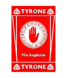 Official G.A.A County Branded Rugs - Tyrone