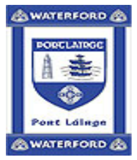 Official G.A.A County Branded Rugs - Waterford