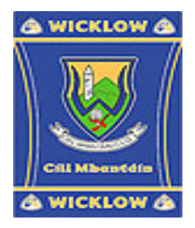 Official G.A.A County Branded Rugs - Wicklow